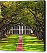 Oak Alley Canvas Print by Steve Harrington