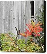 Old Barn In Fall Canvas Print by Keith Webber Jr