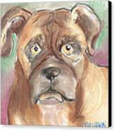 Old Boxer Canvas Print by Christine Callahan