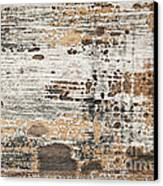 Old Painted Wood Abstract No.1 Canvas Print by Elena Elisseeva