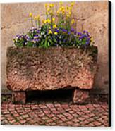 Old Stone Trough And Flowers In Alsace France Canvas Print by Greg Matchick