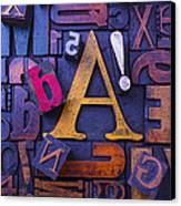 Old Typesetting Fonts Canvas Print by Garry Gay