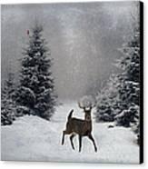 On A Snowy Evening Canvas Print by Lianne Schneider