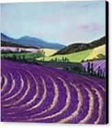 On Lavender Trail Canvas Print by Anastasiya Malakhova