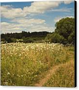On The Summer Meadow II. Russia Canvas Print by Jenny Rainbow
