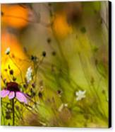 Once Upon A Time There Lived A Flower Canvas Print by Mary Amerman