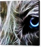 One Eye Canvas Print by Aged Pixel