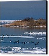 Open Water Canvas Print by Skip Willits
