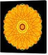 Orange Nasturtium Flower Mandala Canvas Print by David J Bookbinder