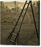 Orchard Ladder Canvas Print by Edward Fielding