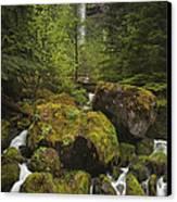 Oregon's Watson Falls Canvas Print by Andrew Soundarajan