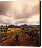 Orfila Canvas Print by Ryan Weddle
