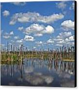 Orlando Wetlands Cloudscape 3 Canvas Print by Mike Reid