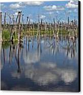 Orlando Wetlands Cloudscape 5 Canvas Print by Mike Reid