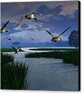 Out Of The Storm Canvas Print by Dieter Carlton