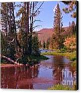 Outstanding Yellowstone National Park Canvas Print by John Malone