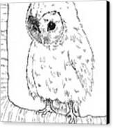 Owl Baby Canvas Print by Callan Rogers-Grazado