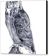 Owl Canvas Print by Lucy D