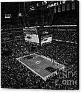 Pacers Indiana Canvas Print by David Haskett