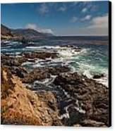 Pacific Coast Life Canvas Print by Mike Reid