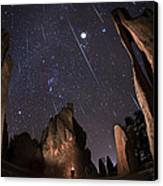 Painting The Needles Under The Geminids Meteor Shower Canvas Print by Mike Berenson