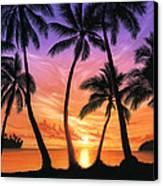Palm Beach Sundown Canvas Print by Andrew Farley