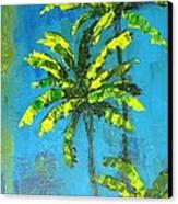 Palm Trees Canvas Print by Patricia Awapara