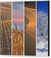 Palouse Seasons Canvas Print by Doug Davidson