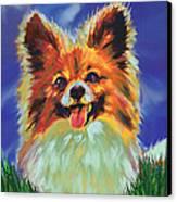 Papillion Puppy Canvas Print by Jane Schnetlage