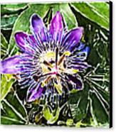 Passion Fruit Flower Canvas Print by Nato  Gomes