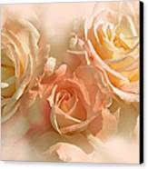 Peach Roses In The Mist Canvas Print by Jennie Marie Schell