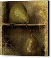 Pears Canvas Print by Priska Wettstein