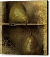 Pears Canvas Print by Priska Wettstein