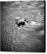 Pebble In The Water Monochrome Canvas Print by Raimond Klavins