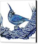 Pen And Ink Drawing Of Small Blue Bird  Canvas Print by Mario Perez