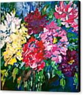 Peonies Canvas Print by Carol Mangano