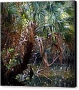 Pepper Creek Palm Canvas Print by Sheri McLeroy