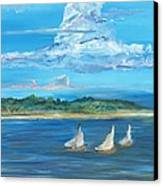 Perfection Canvas Print by Bev Veals