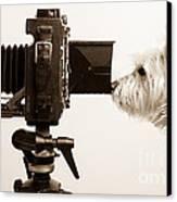 Pho Dog Grapher Canvas Print by Edward Fielding