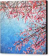Pink Blossom Canvas Print by Setsiri Silapasuwanchai