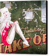 Pinup Girl - Aircraft Nose Art - Take Off Anne Canvas Print by Gary Heller