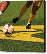 Plays On The Ball Canvas Print by Laddie Halupa