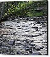 Poconos Gentle Stream Canvas Print by John Telfer