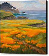 Point Lobos Poppies Canvas Print by Karin  Leonard