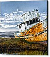 Point Reyes Canvas Print by Robert Rus