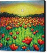 Poppies At Twilight Canvas Print by John  Nolan