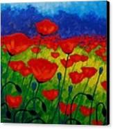 Poppy Corner II Canvas Print by John  Nolan