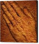 Praying Hands Canvas Print by Don Hammond