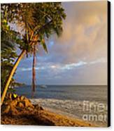 Puerto Rico Palm Lined Beach With Boat At Sunset Canvas Print by Jo Ann Tomaselli