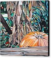 Pumpkin Canvas Print by Anthony Mezza